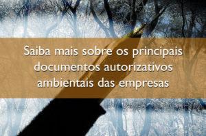 Saiba mais sobre os principais documentos autorizativos ambientais das empresas